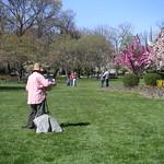 Spring at Sherwood Gardens