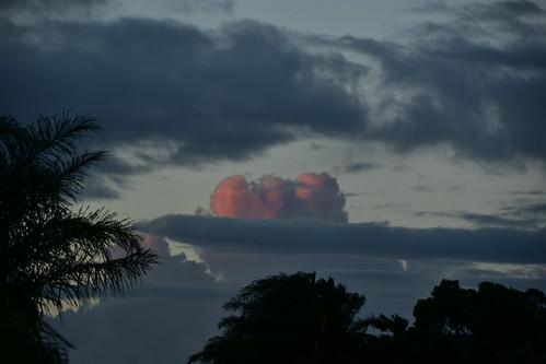 nikon d5500 dusk nikkor nikkor18200mm twilight sky storm clouds palmtrees pink pinksunset pinkclouds 500v20f 1000v40f 1500v60f