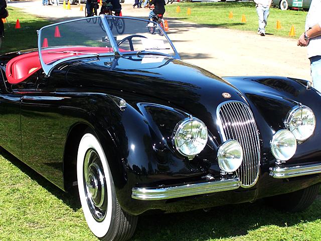 Jag roadster 3