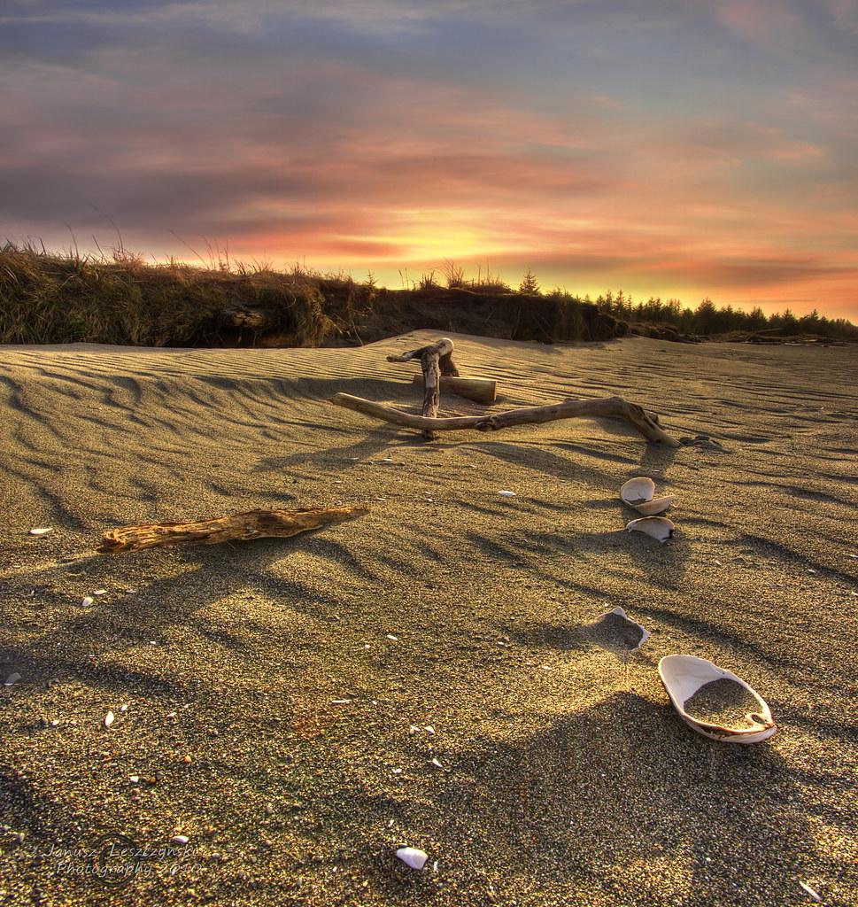 Happiness in a seashell - Queen Charlotte Island 's  / Haida Gwaii by janusz l