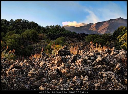 naturaleza nature geotagged volcano lava rocks natura sicily etna catania sicilia paesaggio vulcano lave gmt sciara rapis60 andrearapisarda olympuse620 geo:lat=37702022 geo:lon=15018311