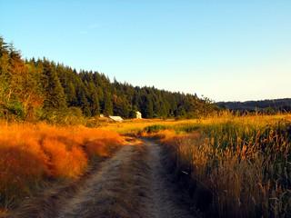 Trail   by halvorsen_brian
