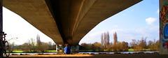 365(2) Day 202 - under the bridge