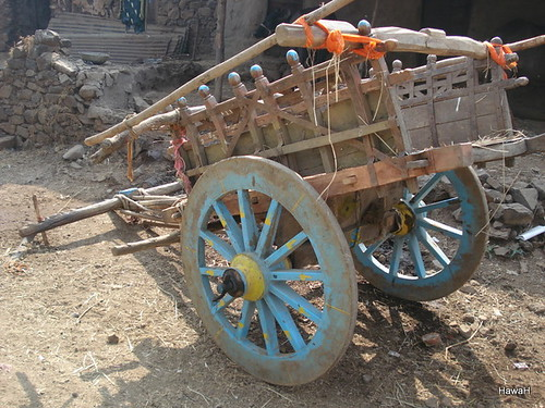 A bull cart with no rider | by everlutionary
