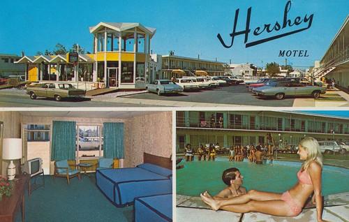 vintage newjersey postcard motel hershey roomview seasideheights poolview triview