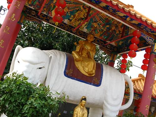 10,000 Buddha Temple   by SamuiStu