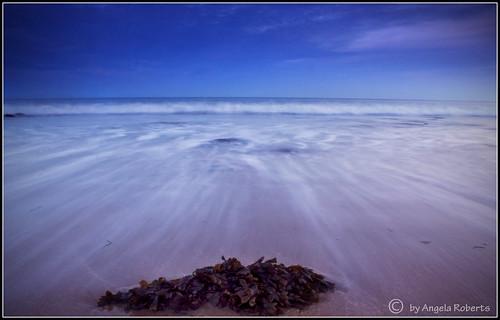 pink blue friends sunset seaweed beach water southwales wales canon geotagged bay seaside seascapes tripod efs1855mm beaches mad wellies wfc langland araf langlandbay pinkwellies angelaroberts 400d canon400d welshflickrcymru geo:lat=51567174 geo:lon=4007757