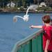 Washington State Ferry by mm_zh