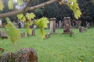 jüdischer Friedhof Weidegasse Trier