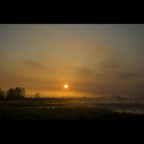 morning mist sunrise landscape dawn spring britishcolumbia surrey april morningmist serpentinefen kinggeorgehighway canonef1740mmf40lusm serpentinefennaturereserve kvdl surreylandscape