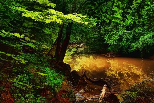 lake landscape digitalart northcarolina hdr lexingtonnc finchpark