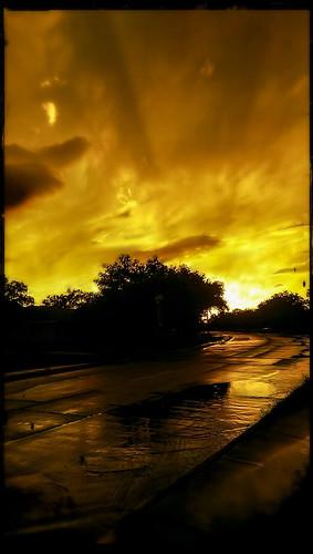 landscape texas ilandman4evr