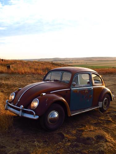 1958 beetle bug kansas grassland coronado heights vw volkswagen plains saline county kafer 58 garnet red