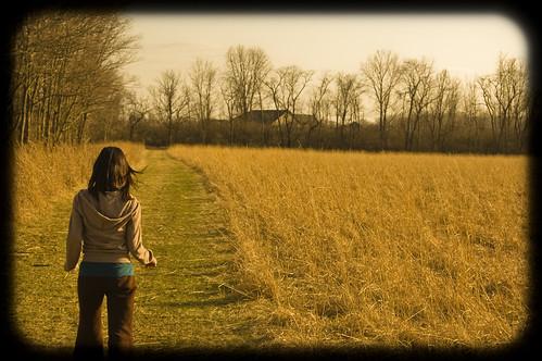 house tree field grass woods warm path walk reserve pasture prairie vignette cemex flickrdiamond