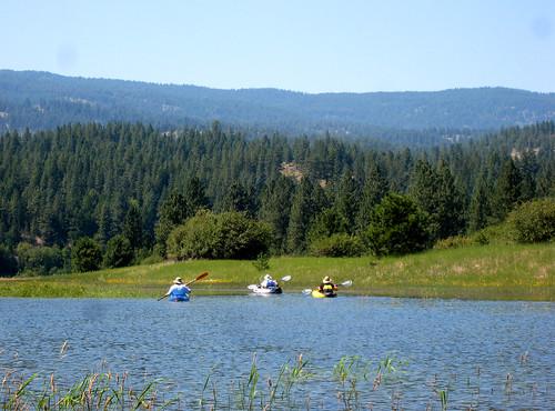 vacation forest river washington kayak paddling