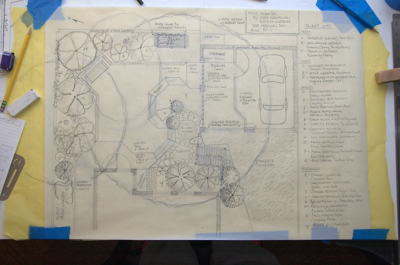 Final rendering, backyard garden design