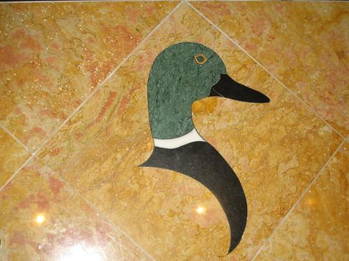Elevator Duck | by Tanya R.