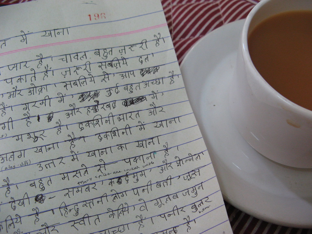 Check Out Our Comparison Between American and Indian Cuisines Essay