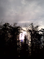 The sun is peeping!