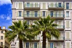 Pastel Building and Palm Trees - Quai des Etats-Unis, Nice