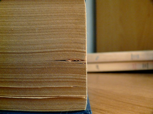 wooden book | by Bastetia