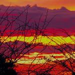 Sky on fire - Okonjima Lodge, Namibia
