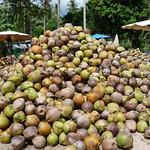 Koh Samui Coconuts charcoal factory @Maenam コサムイ-椰子炭工場0005