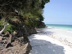 2009 6 090 Kenya Diani Beach   by Joao Maximo
