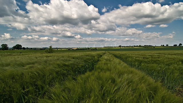 Orsbacher Felder