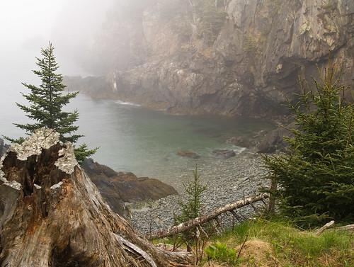 morning fog maine lubec westquoddyheadlight quoddyheadstatepark
