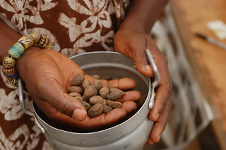 Shea Nut Extraction | by whiteafrican