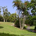 Viajefilos en Australia. Sydney  005_1