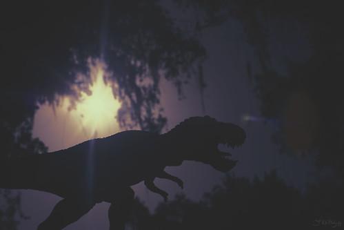 sun sunlight canon toy 50mm dinosaur florida figure jacksonville 365 extinction trex tyrannosaurus toyphotography 5dmarkiii earlware 3rdratephotography alvarezhypothesis