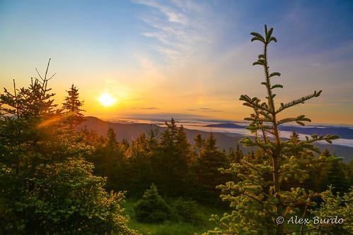 summer nature june sunrise landscape photo scenery vermont unitedstates image picture photograph summit stowe mtmansfield 2015 canonef24105mmf4lisusmlens lamoillecounty canoneos5dmarkiii ctybcvermonttrip