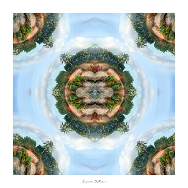 Cactus symmetry #3