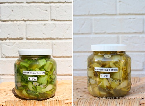 pickled mustard greens-ベトナム風お漬け物 | by van_pham