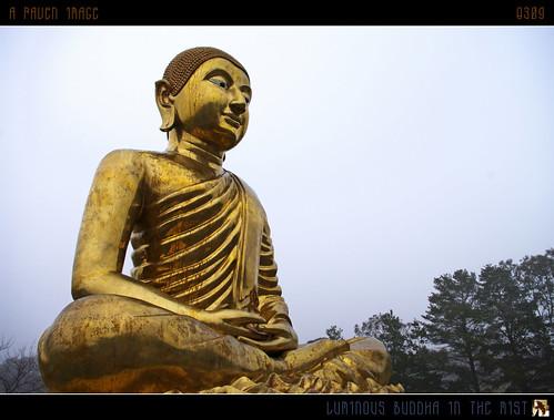 mist statue fog geotagged interestingness buddha australia explore serenity canberra luminous hdr buddhistcentre explored inexplore aug2 geo:lon=149147269 tomraven aravenimage q309 geo:lat=35339638