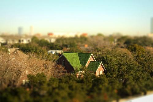 bridge trees canon rebel miniature downtown texas fake houston shift bayou pasadena tilt xsi