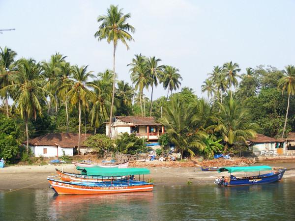 Goan idyll - Goa river scene