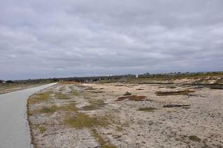 fort_ord_dune_highway