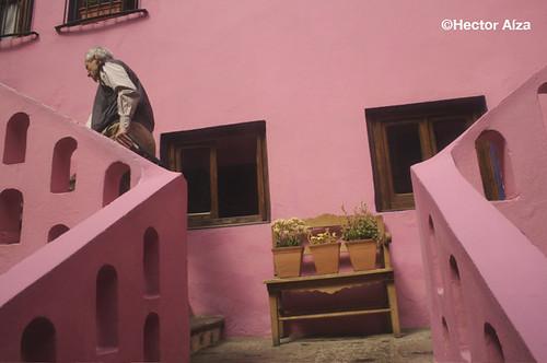 Escher en rosa / Pink Escher