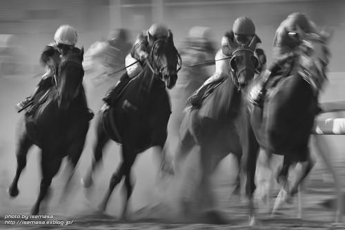Horse racing dynamism | by asamesi_jp