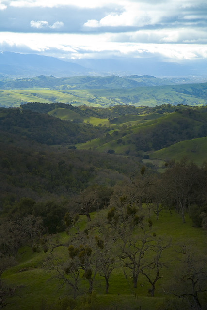 Henry Coe State Park 0937