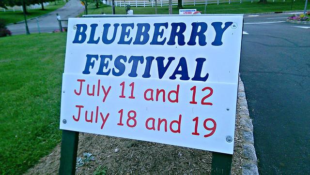 Blueberry Festival -edit