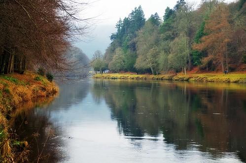 ericrobbniven scottishwildlifetrust scotland rivertay dunkeld perthshire river water