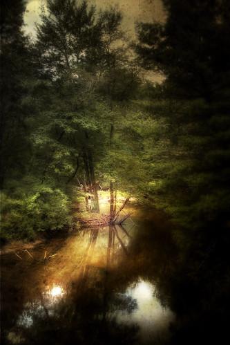 light texture photoshop canon landscape ma newengland fantasy townsend squannacookriver