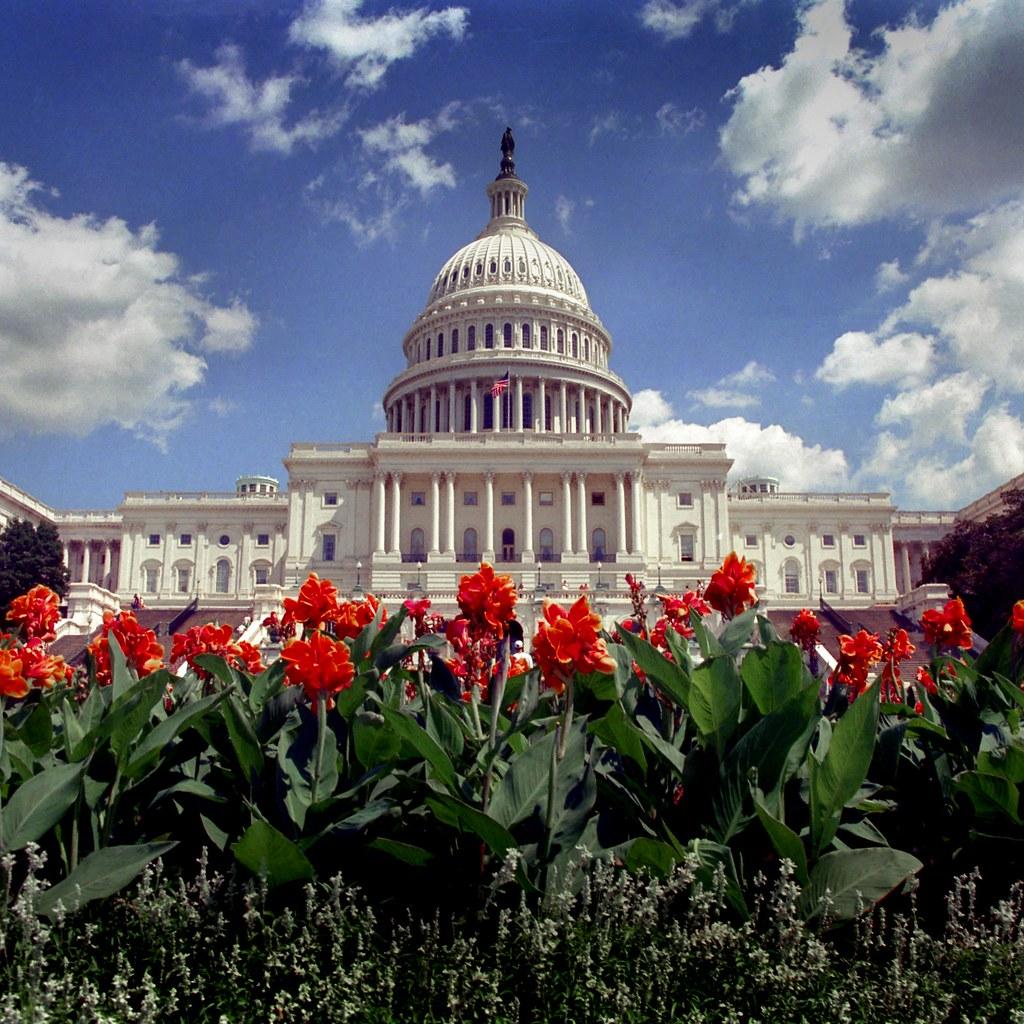 Washington Dc Shooting: USA - Washington DC - Capitol Sq