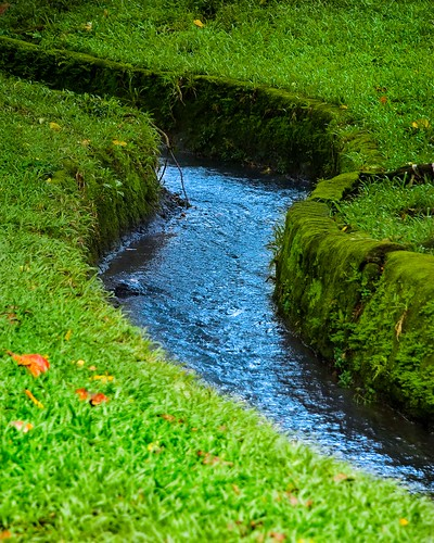 nature water up grass garden landscape fun george stream philippines explore brook mateo quezoncity gregorio universityofthephilippines inspiredbylove explored thehousekeeper flickristasindios frommylensthroughyoureyes litratistakami georgemateo