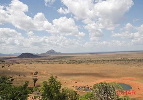 game landscape nikon kenya reserve safari tsavo d80 vosplusbellesphotos