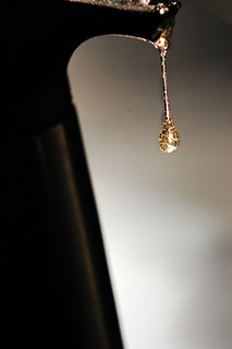drop of gold | by vl8189
